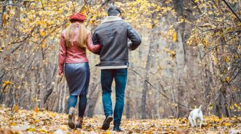 Paar geht durch Herbstlandschaft mit Hund spazieren