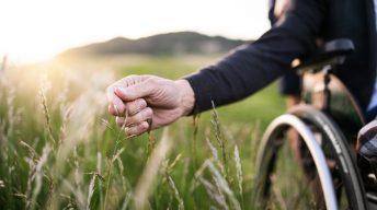 Hand greift ins Feld vom Rollstuhl aus